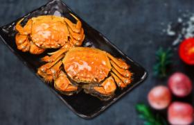 专家建议冰鲜螃蟹炒制或油炸的原因