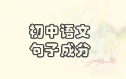 语文句子成分(初中语文句子成分)