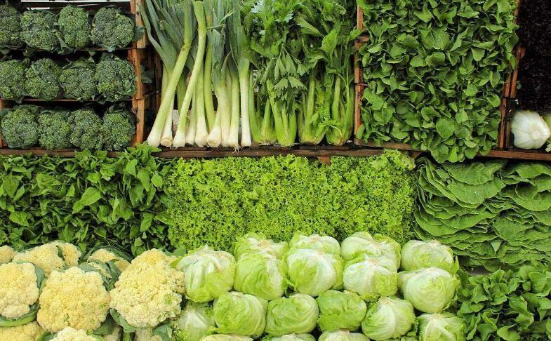 绿色食品有哪些