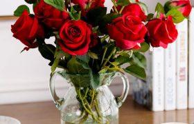玫瑰花水培怎么才能养的久一点