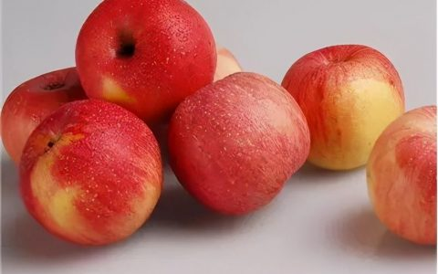 苹果可以去痘印吗(巧用苹果去除痘印!)
